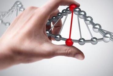 """Новая услуга ДНК тест в клинике """"Эпиона Медикус"""""""